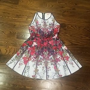 Ted Baker fit and flare floral dress